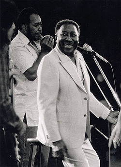 Muddy Waters.jpg